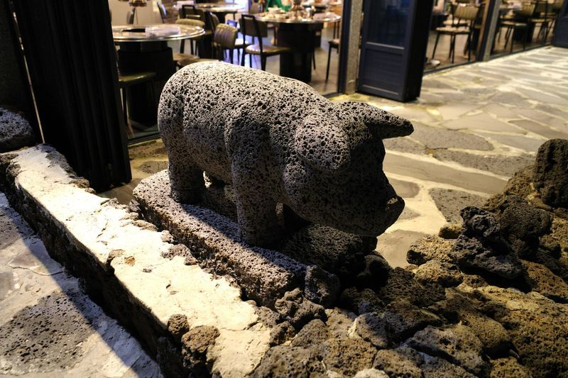 「済州島の板浦里で美味しい黒豚焼肉が食べられるお店【海を見た豚(바다를본돼지)】」のアイキャッチ画像